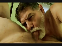 Dadd bear blowjob 4